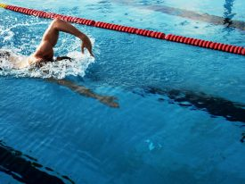 How to Swim the Freestyle Stroke