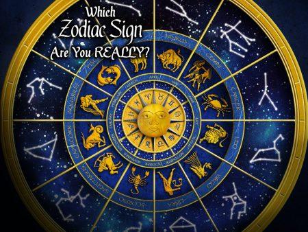 Zodiac Signs Cartoon Images