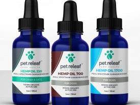 What Things Should You Consider Before Treating Your Dog With CBD Oil?