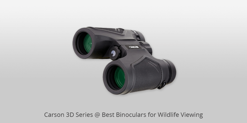 Buying A Right Pair Of Binoculars: Know The Basic Things First!