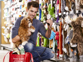 A Guide To Purchasing Pet Items – Know About The Guide